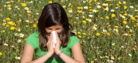 ¿Cómo son las pruebas de alergia?